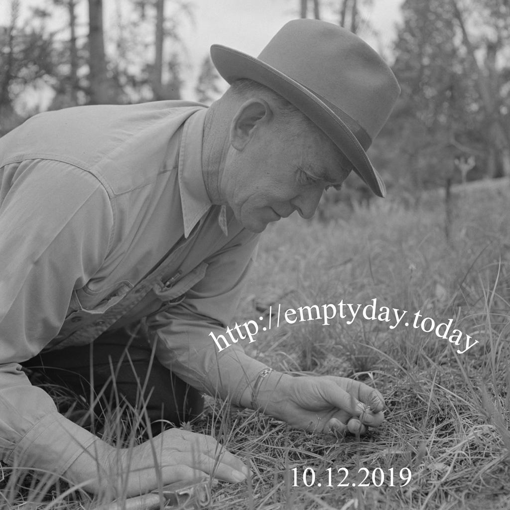 Empty Day