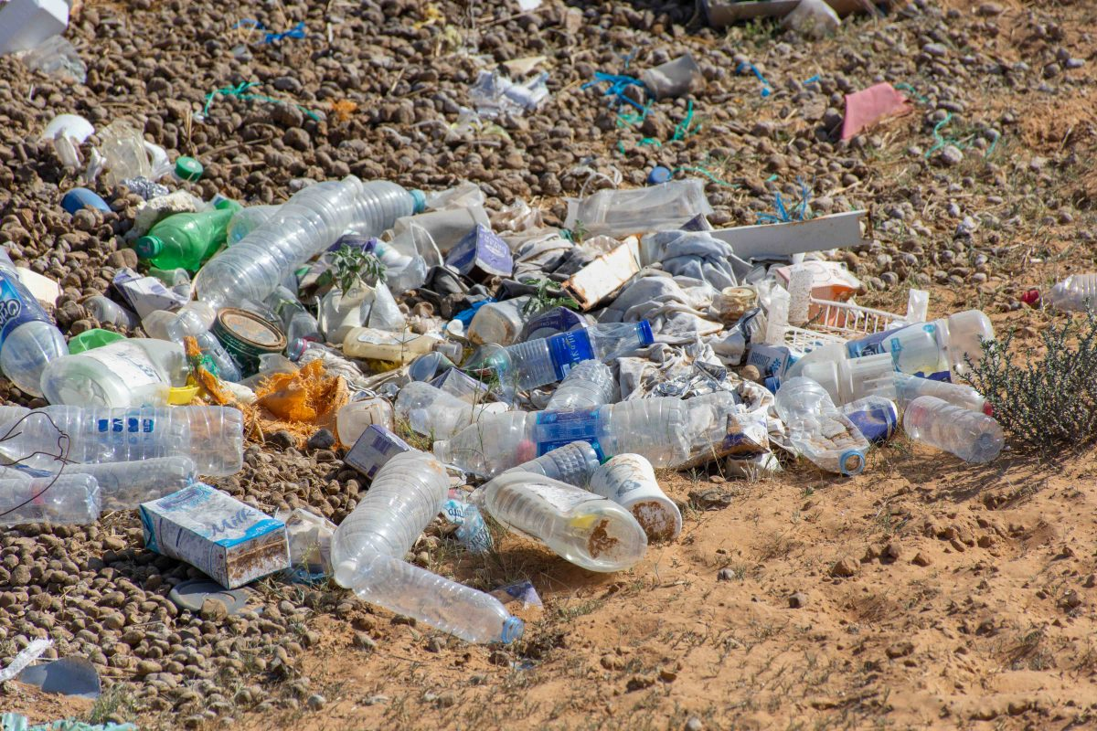 DGrade: A productive solution for plastic pollution